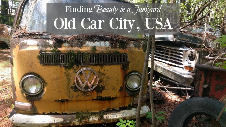 Finding Beauty in the Junkyard at Old Car City USA [video]