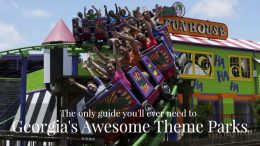 The best Amusement Parks in Georgia