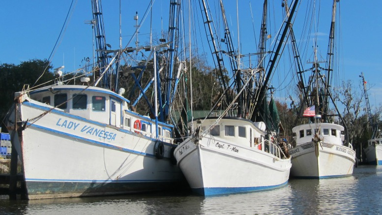Darien Georgia Shrimp Boats