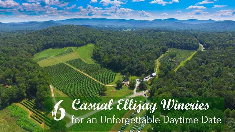Ellijay Winery Options - Cartecay Vineyards